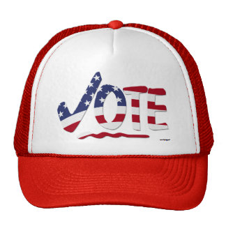 Check Mark VOTE with US Flag Cap