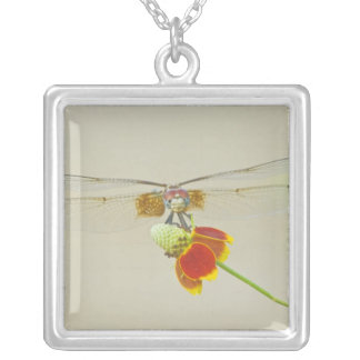 Checkered Setwing (Dythemis fugax) on Mexican Silver Plated Necklace