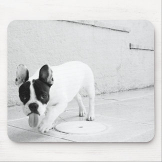 Cheeky Frenchie Mousepad