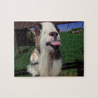 Cheeky Goat Novelty Jigsaw Puzzle