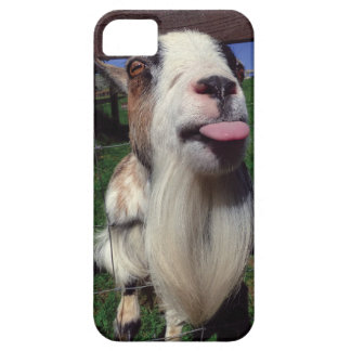 Cheeky Goat Phone case