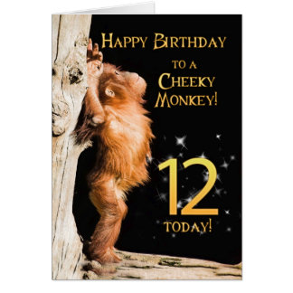Cheeky monkey age 12 card