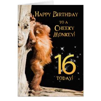 Cheeky monkey age 16 card