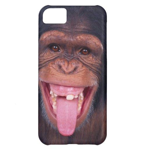cheeky monkey chimp chimpanzee wild animal cover for iPhone 5C