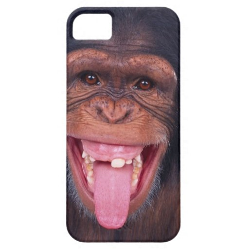 cheeky monkey chimp chimpanzee wild animal iPhone 5 cover