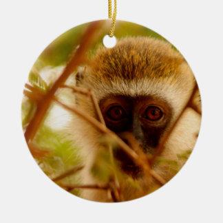 Cheeky Monkey. Round Ceramic Decoration