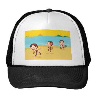 cheeky monkeys hat
