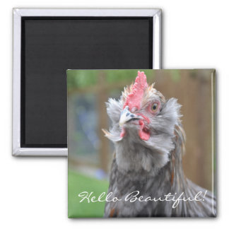 Cheeky Rooster Hello Square Magnet