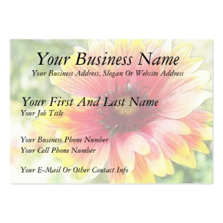Cheerful Blanket Flower Bloom Pack Of Chubby Business Cards