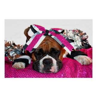 Cheerleader Boxer dog poster
