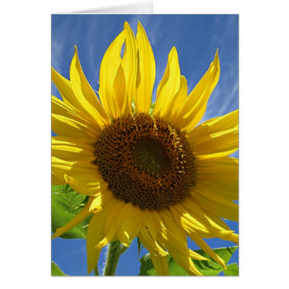 Cheery Sunflower Card