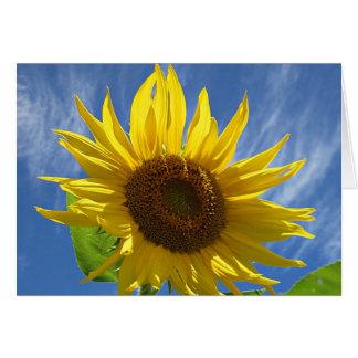 Cheery Sunflower Greeting Card