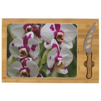 Cheese Board - Orchid