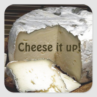 Cheese it up! Fun Cheese Gift for cheese lovers Square Sticker