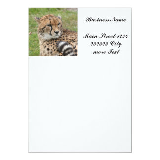 Cheetah 1115 13 cm x 18 cm invitation card