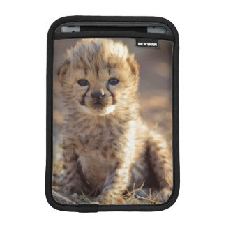 Cheetah 19 days old male cub iPad mini sleeve