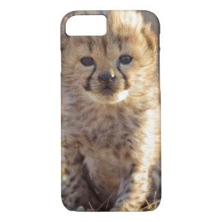 Cheetah 19 days old male cub iPhone 8/7 case