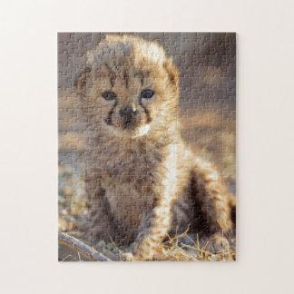 Cheetah 19 days old male cub jigsaw puzzle