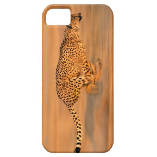 Cheetah 4 case for the iPhone 5