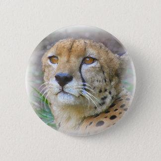 cheetah 6 cm round badge