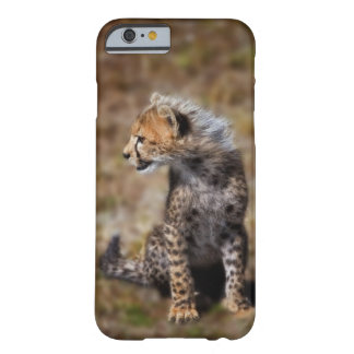 Cheetah (Acinonyx Jubatus) as seen in the Masai 2 Barely There iPhone 6 Case