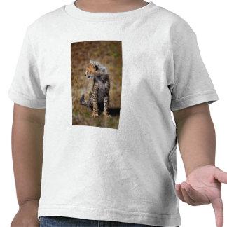Cheetah (Acinonyx Jubatus) as seen in the Masai 2 T-shirt