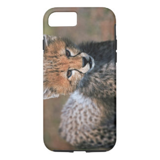 Cheetah (Acinonyx Jubatus) as seen in the Masai 3 iPhone 8/7 Case