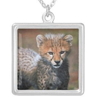 Cheetah (Acinonyx Jubatus) as seen in the Masai 3 Square Pendant Necklace