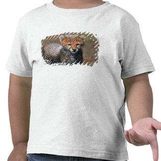 Cheetah (Acinonyx Jubatus) as seen in the Masai 3 T-shirt