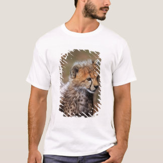 Cheetah (Acinonyx Jubatus) as seen in the Masai T-Shirt