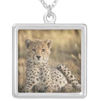 Cheetah, Acinonyx jubatus, cub laying downin Square Pendant Necklace