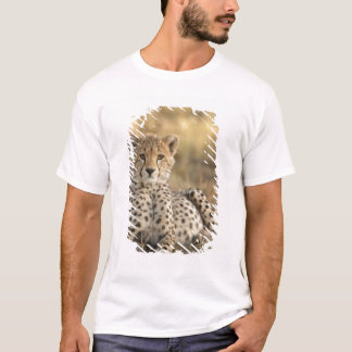 Cheetah, Acinonyx jubatus, cub laying downin T-Shirt