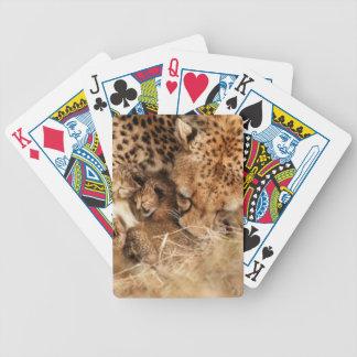 Cheetah (Acinonyx Jubatus) Grooming One-Day Old Playing Cards