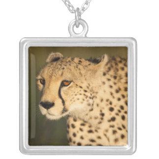 Cheetah, Acinonyx jubatus, in the Masai Mara 2 Square Pendant Necklace