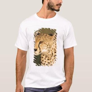 Cheetah, Acinonyx jubatus, in the Masai Mara 2 T-Shirt