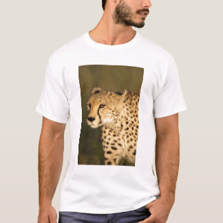 Cheetah, Acinonyx jubatus, in the Masai Mara 2 T-Shirt