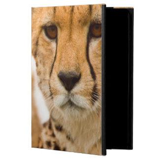 Cheetah (Acinonyx Jubatus) Mother And Cub Case For iPad Air
