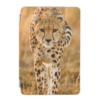 Cheetah (Acinonyx Jubatus) Portrait, Maasai iPad Mini Cover