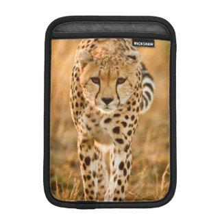Cheetah (Acinonyx Jubatus) Portrait, Maasai iPad Mini Sleeve