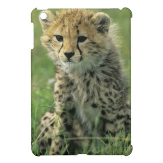 Cheetah, (Acinonyx jubatus), Tanzania, Serengeti iPad Mini Case