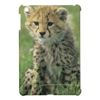 Cheetah, (Acinonyx jubatus), Tanzania, Serengeti iPad Mini Cases