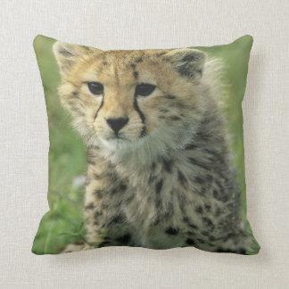 Cheetah, (Acinonyx jubatus), Tanzania, Serengeti Throw Pillow