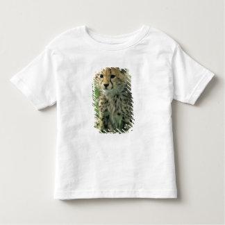 Cheetah, (Acinonyx jubatus), Tanzania, Serengeti Toddler T-Shirt