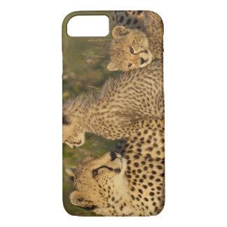 Cheetah, Acinonyx jubatus, Upper Mara, Masai iPhone 8/7 Case
