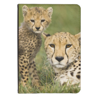 Cheetah, Acinonyx jubatus, with cub in the Kindle Touch Case