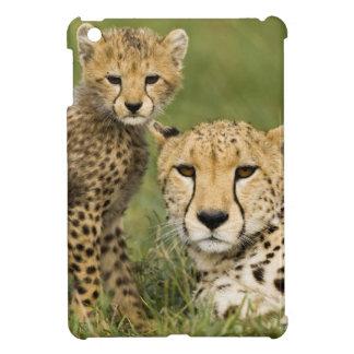 Cheetah, Acinonyx jubatus, with cub in the iPad Mini Cases