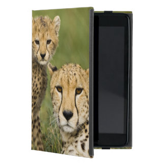 Cheetah, Acinonyx jubatus, with cub in the iPad Mini Cover