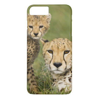 Cheetah, Acinonyx jubatus, with cub in the iPhone 8 Plus/7 Plus Case