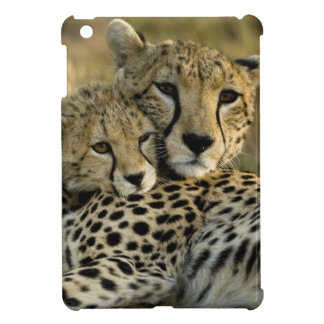 Cheetah, Acinonyx jubatus, with cub in the Masai 2 iPad Mini Case