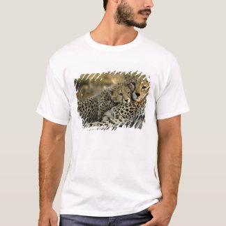 Cheetah, Acinonyx jubatus, with cub in the Masai 2 T-Shirt